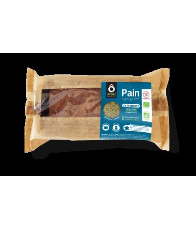 Pain de Neptune BIO Algues . Spiruline 310g